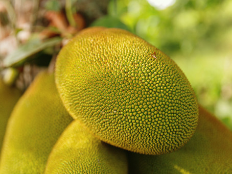 Nutrition Facts and Health Benefits of Eating Jackfruit, According to Science
