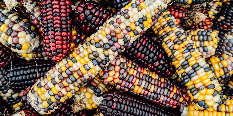 Indian Corn Take & Make Kits
