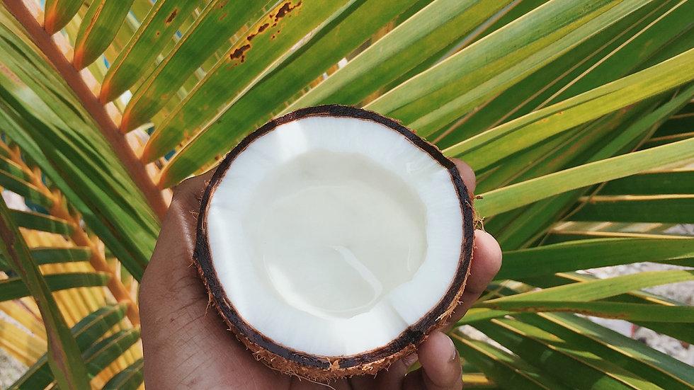 CBD Cocus Massage Oil 50 ml