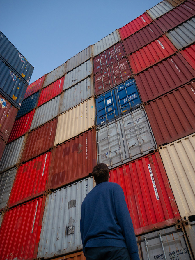 U.S. FSMA delegates responsibility to importers in evaluating safety of imported foods