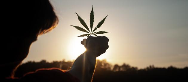 Breaking: CANNABIS IS NO LONGER CLASSED AS A DANGEROUS DRUG!