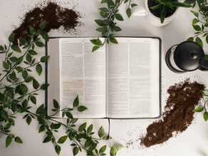 The Five Step System For Eliminating Confusion When Your Reading The Bible