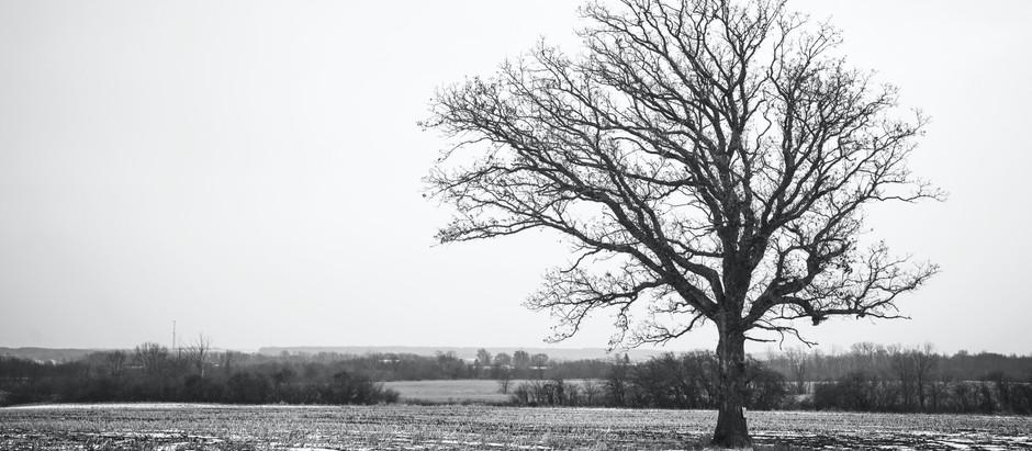 鬱と自殺について2
