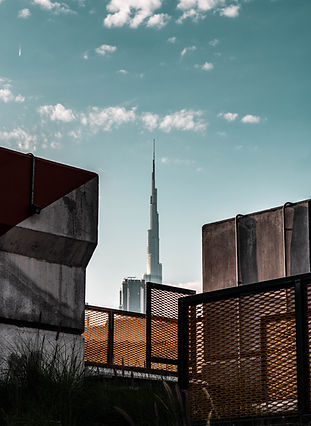 Image by Omar Yehia