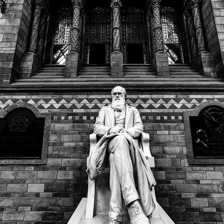 Darwin's Evolution and Modernity