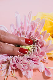Zenful Nail Extensions
