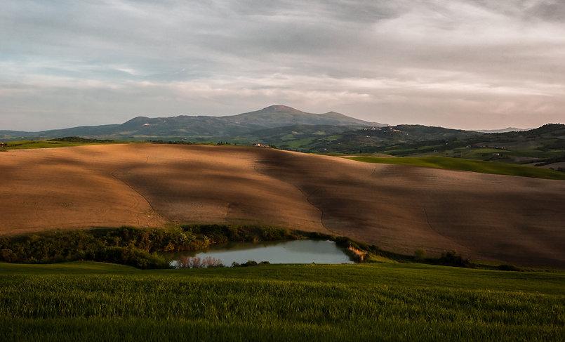 Image by Stefano Bernardo