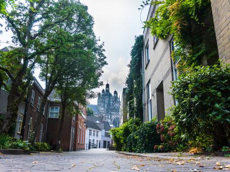 ¿Puede la Vegetación Urbana Ayudar a Mejorar la Calidad del Aire en las Ciudades?