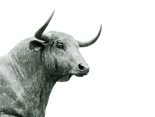 Enjoy Taurus season. It seems bullish so far.