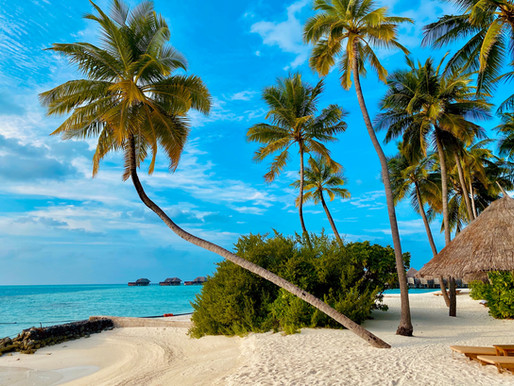 Marvelous Experiences In the Maldives
