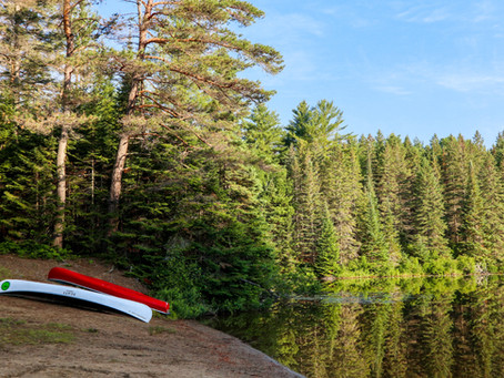 Falling in Love with Muskoka, Ontario: The Capital of Cottages