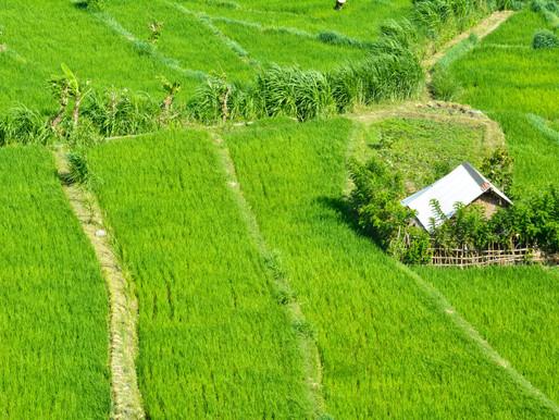 Siaran Pers | Ruralisasi Perlu Direspons Dengan Pengelolaan Dana Desa yang Efektif
