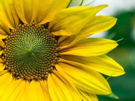 Nature is Nurture - Mental Health Awareness Week 2021