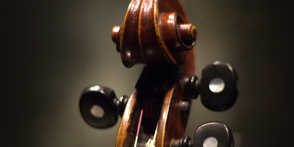 """""""Arpeggione"""" with the Olympia Symphony"""