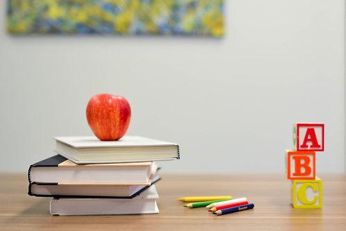 ' School Snacks Taster '        Option  A:  Plumcakes with dark choco drops -