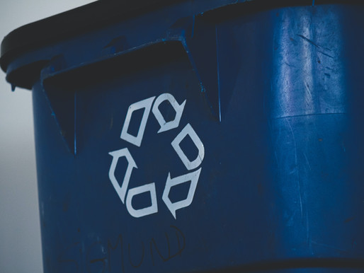 Sustainability Committee: Neighborhood Recycling and Community Composting