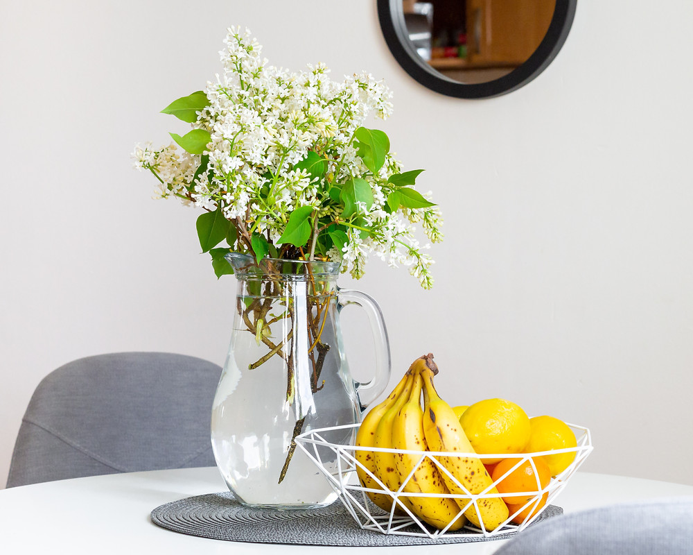Plant hacks, plant tips, indoor plant hacks, indoor plant tips, gardening hack, easy at home diy, indoors, at home, plant home remedies, home remedy, DIY, plant DIY, Interior design vancouver,  Interior design basics,