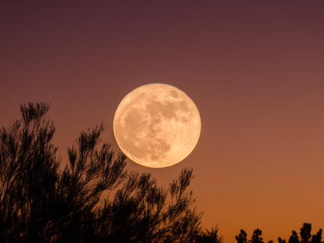 立秋と新月で奇跡のような偶然=必然を起こすには