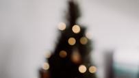 'Suspended Forest', una segunda vida artística para los árboles de Navidad