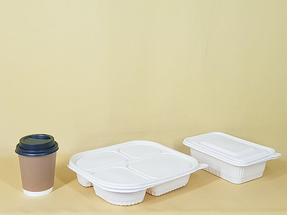100 Food Containers