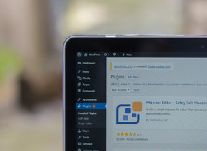 Awesome Wordpress plugins