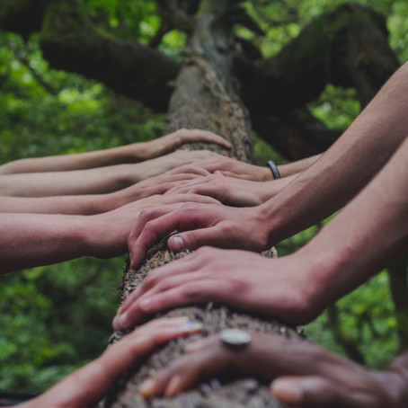 The Importance Of Collective Connections