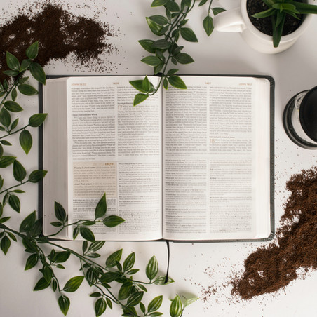 Glory and Grace: Getting Rooted