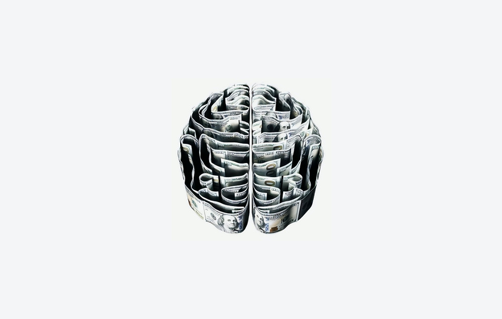 brain dissected drawing