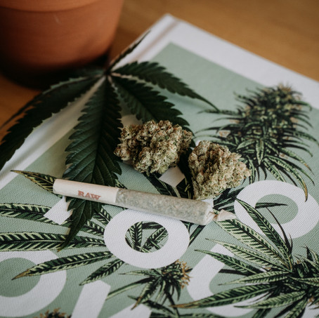 How to talk to your Parents and Grandparents about Cannabis.
