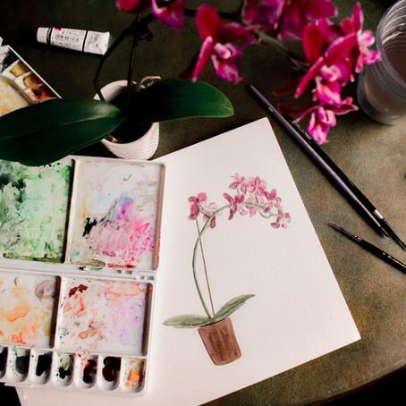 Awakening My Ikigai:The Japanese Secret to Happiness