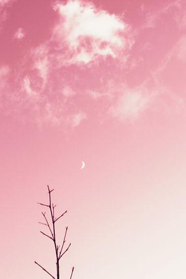 Image by J Lee