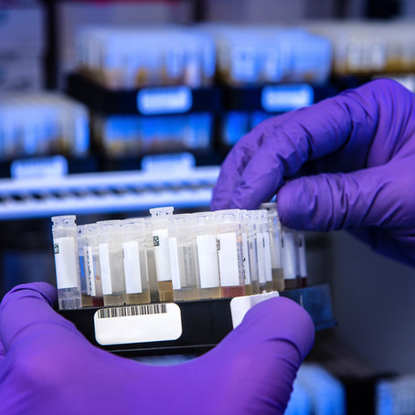 Rapid increase in level of seropositivity (CW2.3)