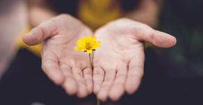 Forgiveness: Why You Should Always Forgive. An Interview with Nathan Phillips