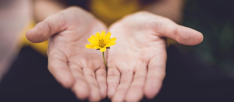 Reiki - A Divine Healing Experience