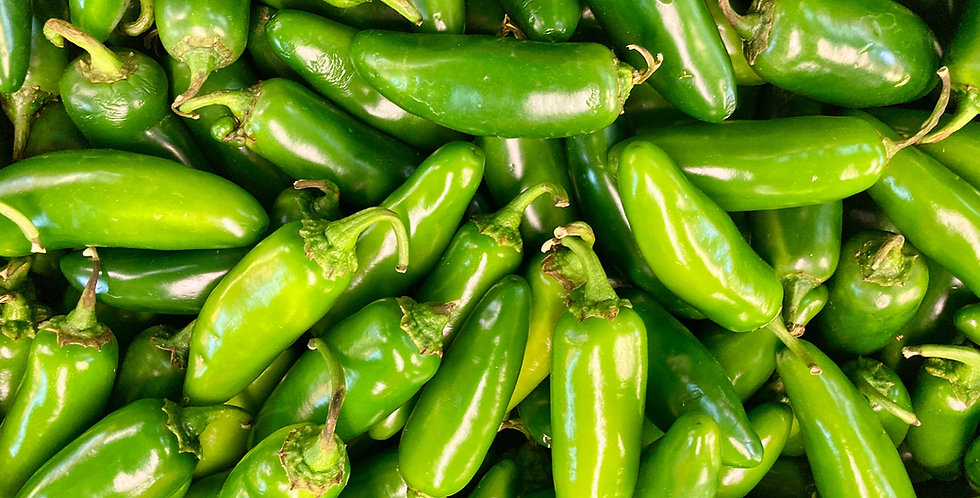 Hot Pepper- Jalapeno