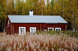 Image by Håkon Grimstad