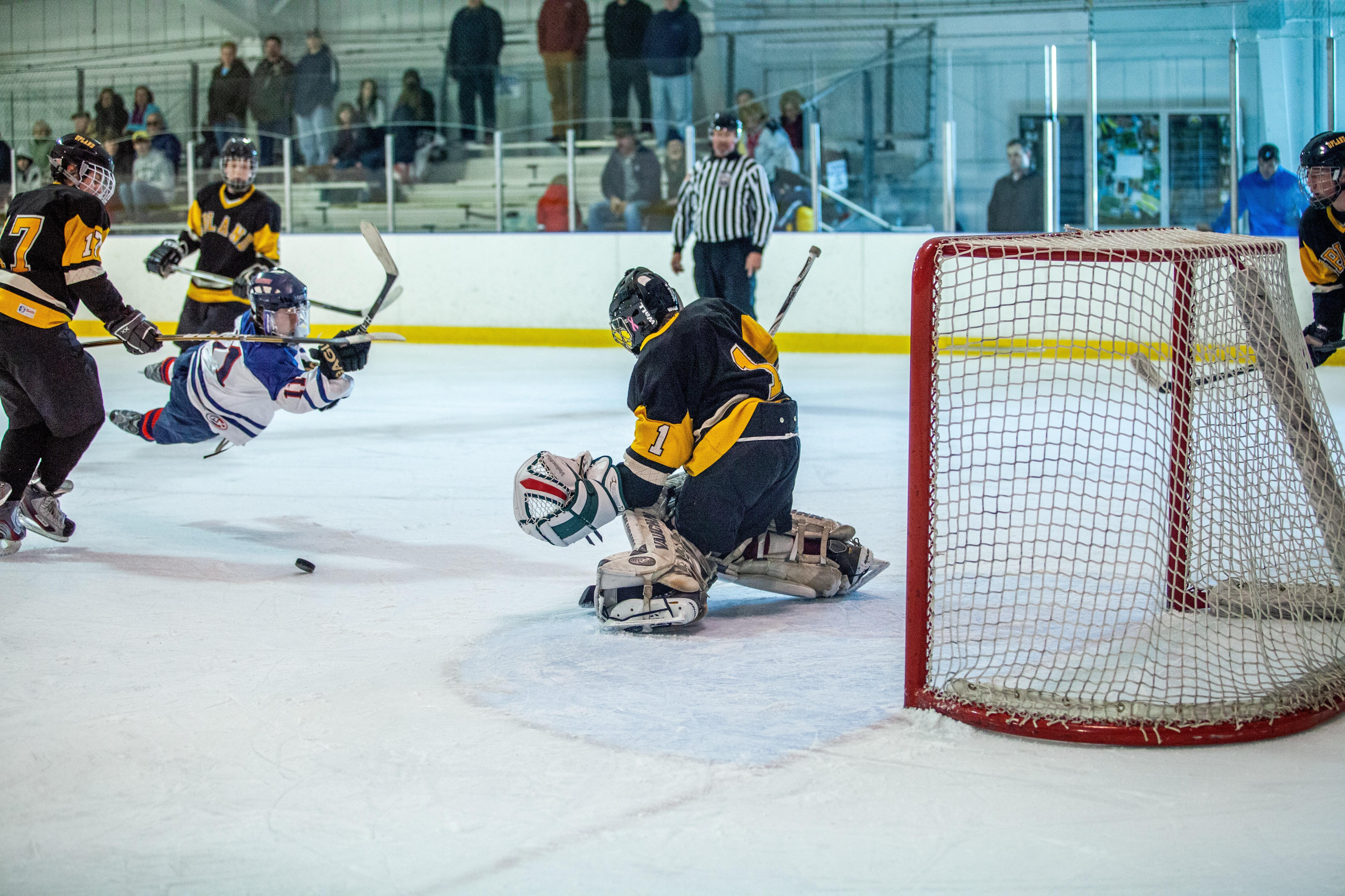 Open Hockey Goalie
